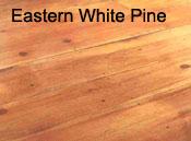 eastern white pine2