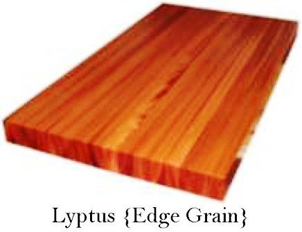 Lyptus Custom Wood Countertop