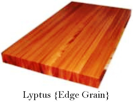 Lyptus Custom Wood Countertop