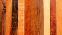 exotic wood species