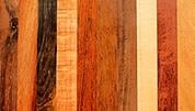exotic wood species